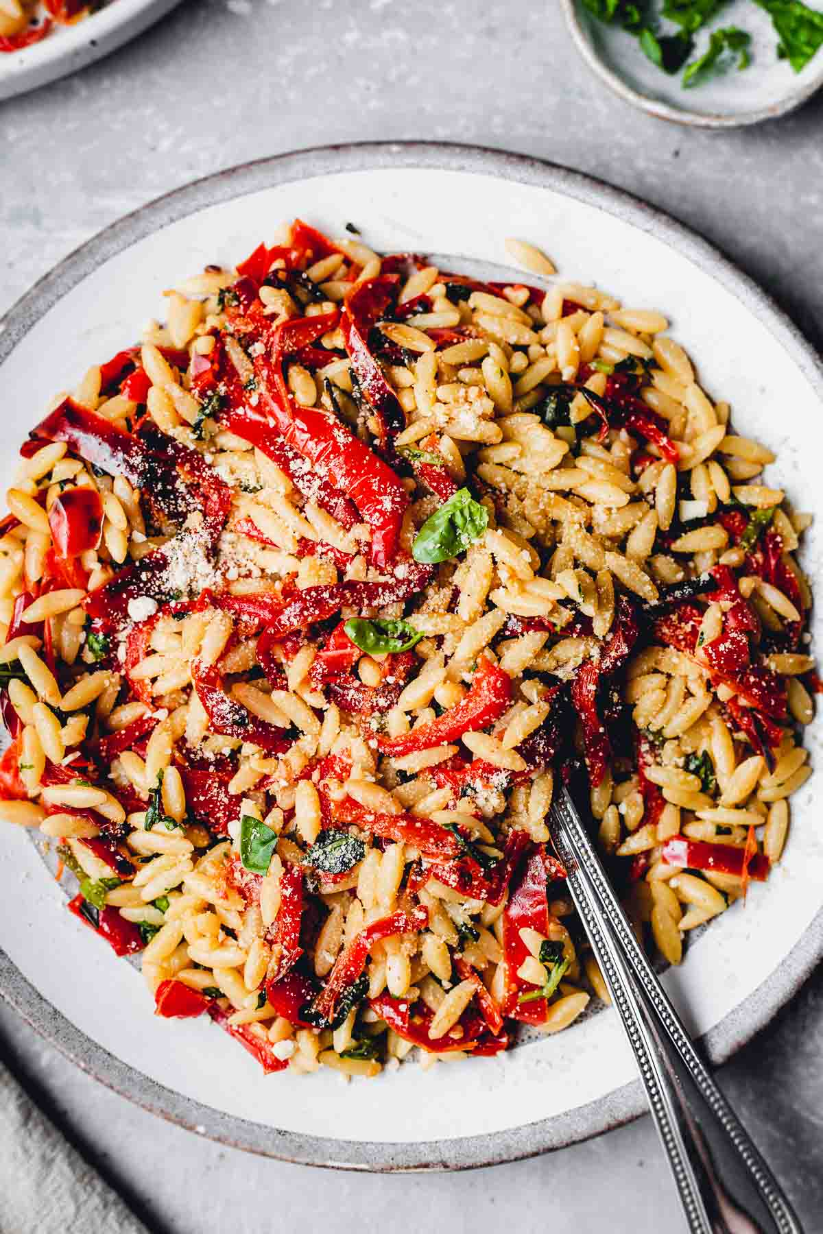 A close-up shot of vegan orzo pasta on a plate.