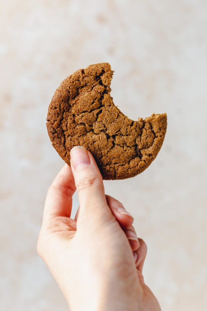 A hand holding out a ginger cookie with one bite taken out of it.